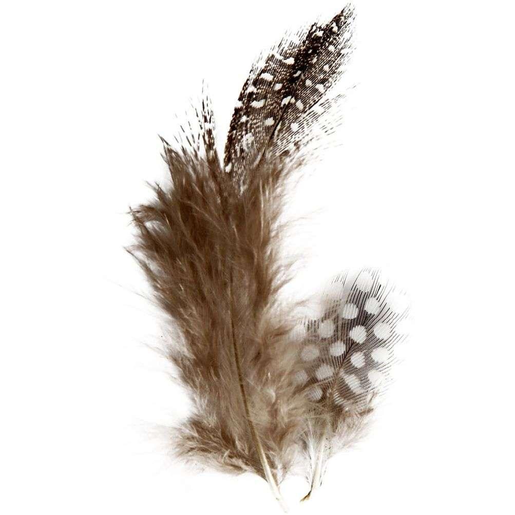 Perlehønsfjær natur - Natur 3 G