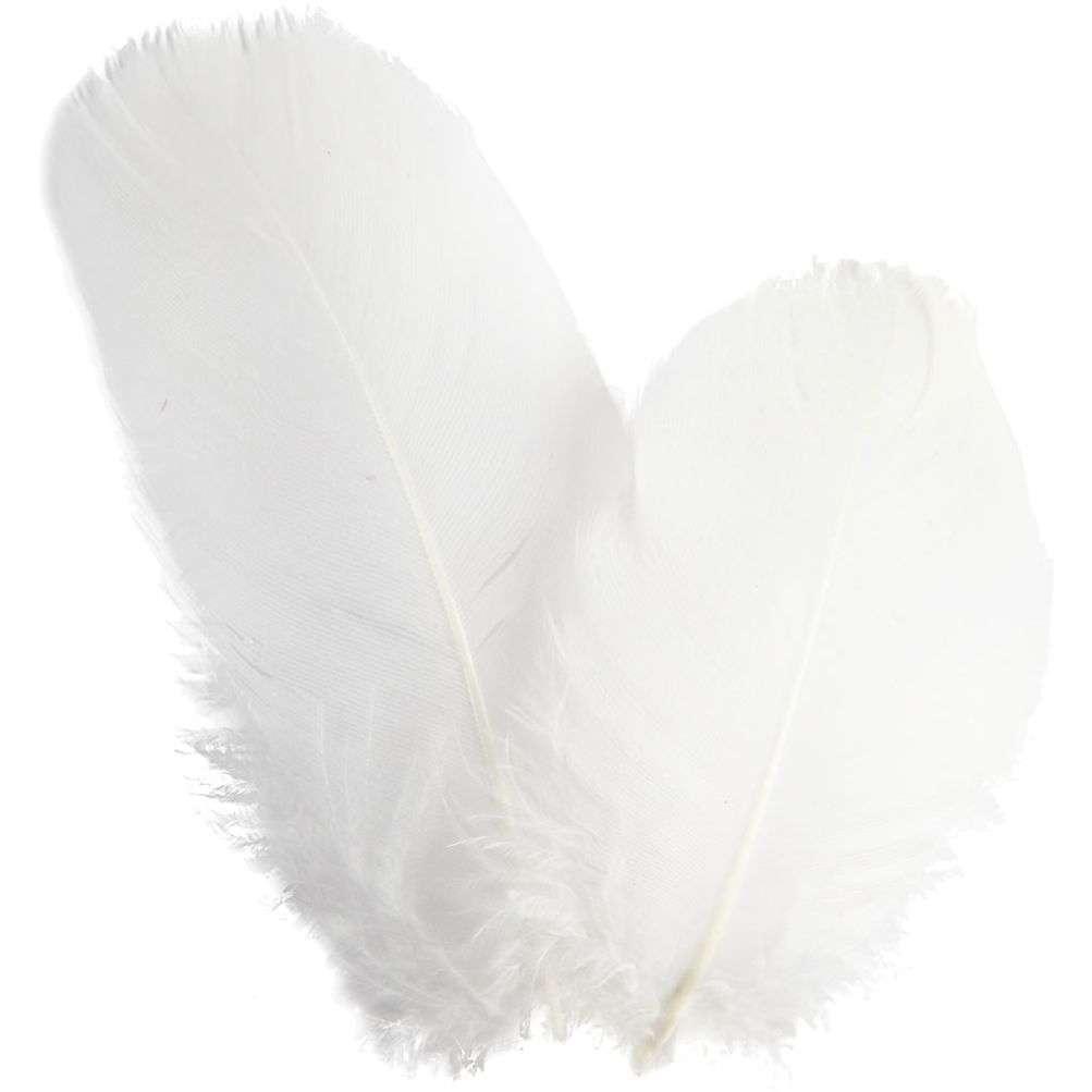 Rundfjær, gås - Hvit ca 8 cm
